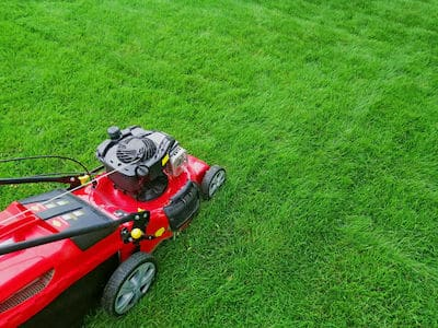 proper mowing the yard