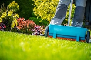 how to choose the right fertilizer