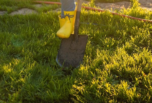 digging with at least three inches of clean dry soil
