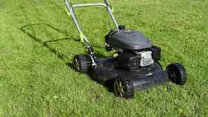 When to Start Mowing